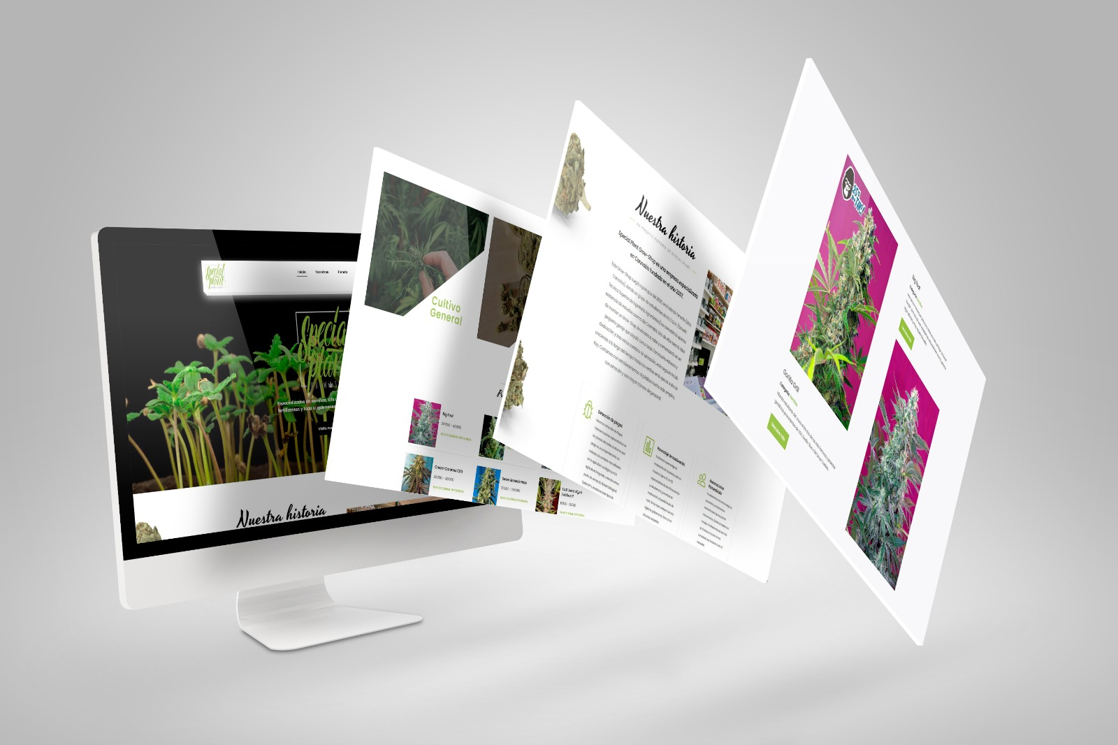 Proyecto Web - Special Plant