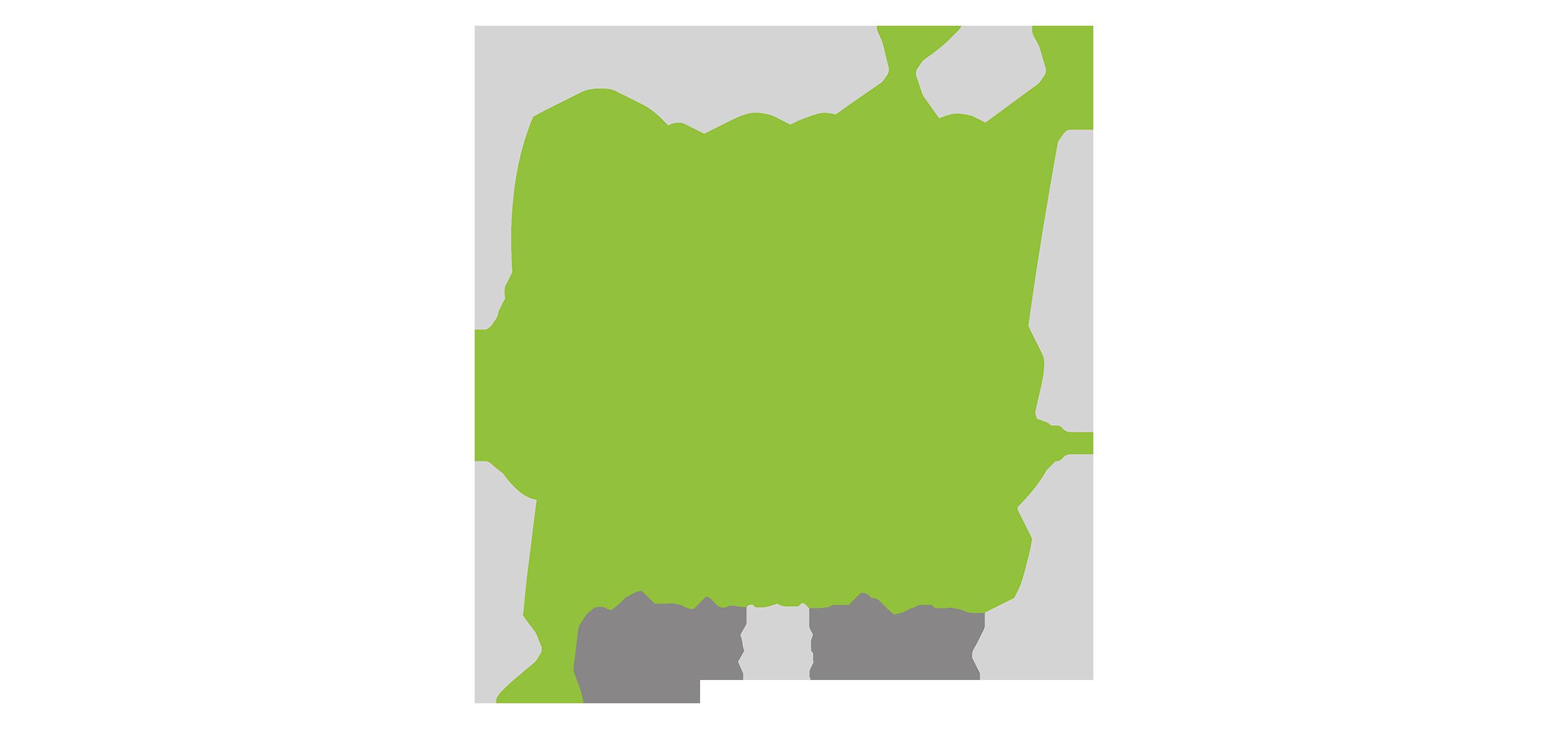 special plant - Portfolio