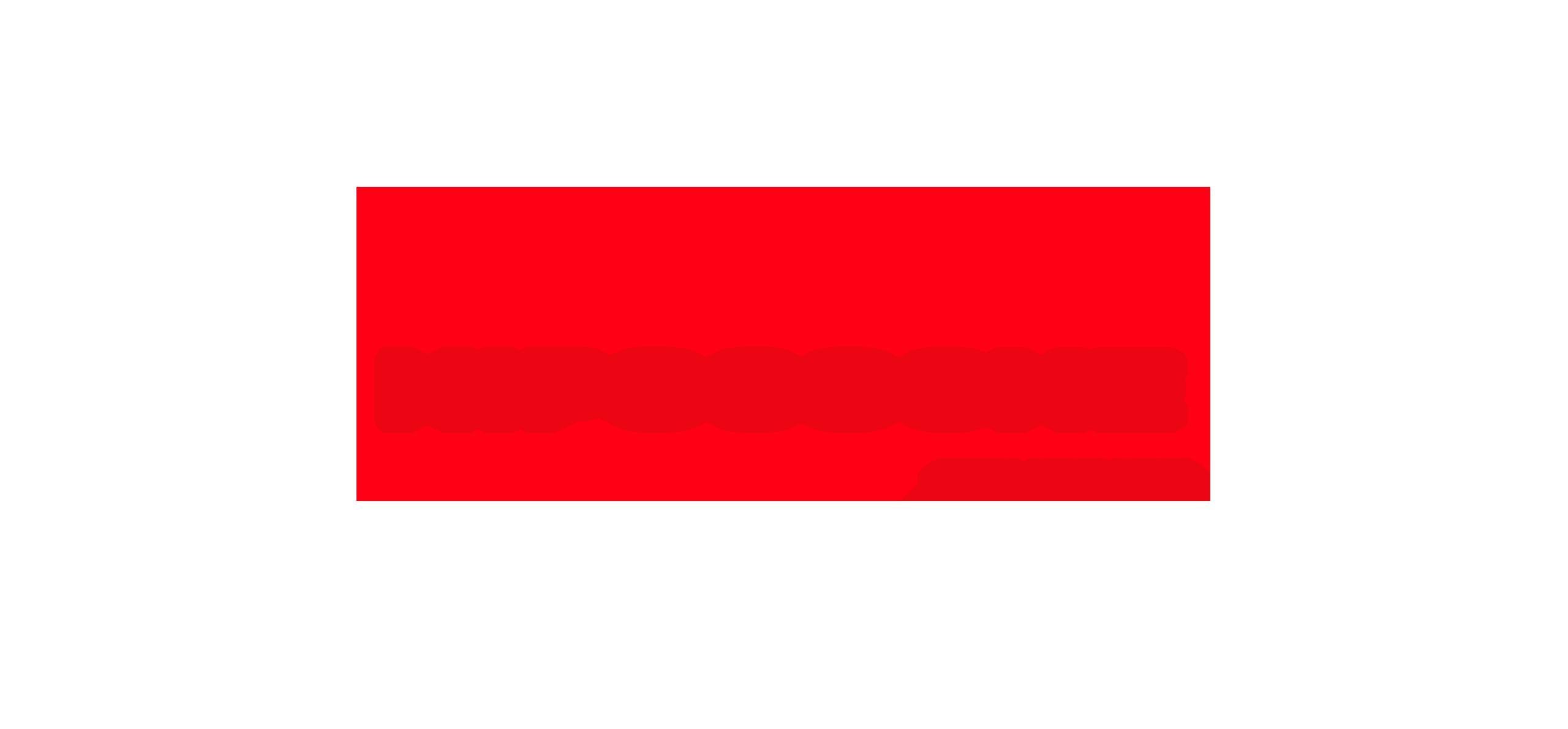 portfolio-hipocoche